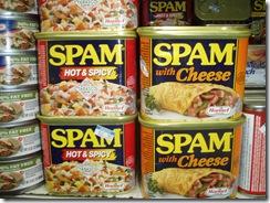 A Spam 2 2-27-2011 11-09-46 AM