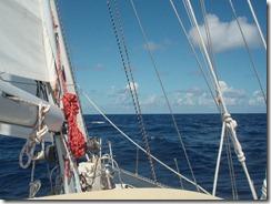 Thankful Under Sail 11-19-2011 10-49-14 AM